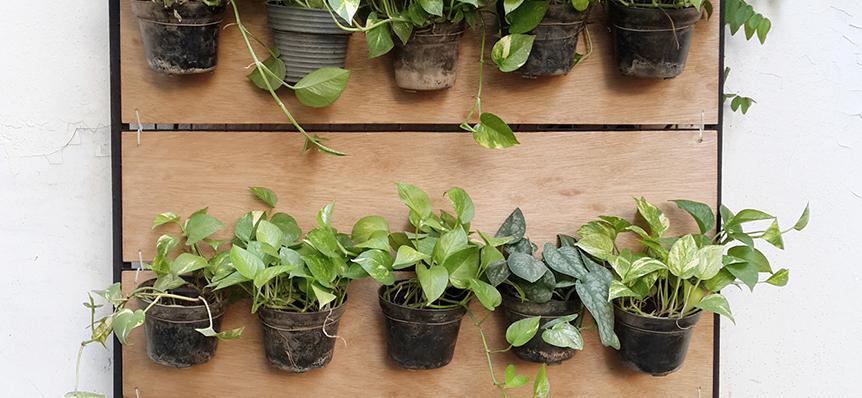 DIY Hanging Garden dari Kayu Triplek